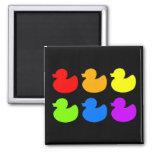 Rainbow Rubber Ducks on Black