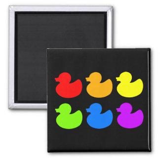 Rainbow Rubber Ducks on Black Magnet