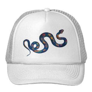 Rainbow Snake Cap