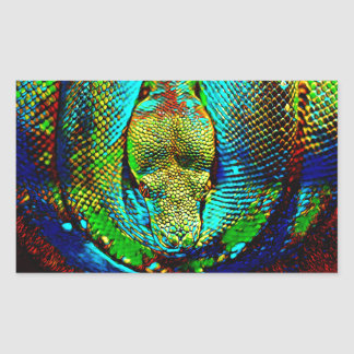 Rainbow Snake Rectangular Sticker