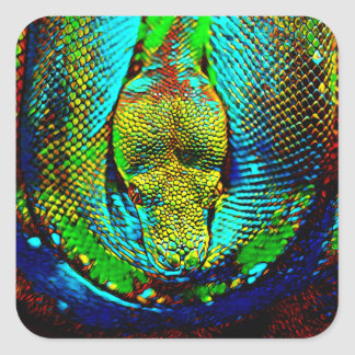 Rainbow Snake Square Sticker