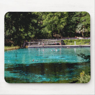 Rainbow Springs Mouse Pad