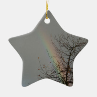 rainbow star ceramic star decoration
