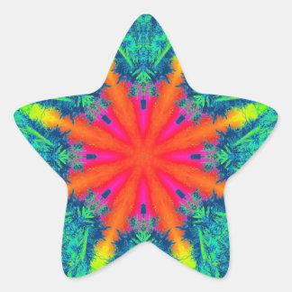 "Rainbow Star Sticker (1.5"") 20 per sheet"