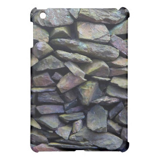 Rainbow Stone Wall iPad Mini Case