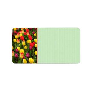 Rainbow Tapestry Address Label