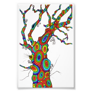 Rainbow Tree - colourful photographic print