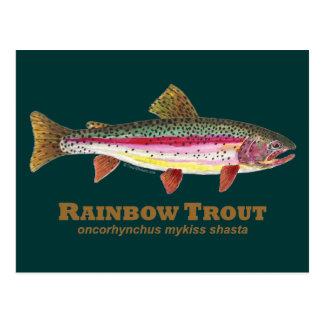 Rainbow Trout Latin Postcard
