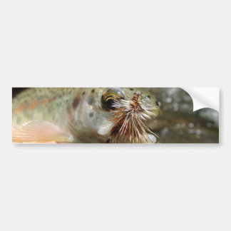 Rainbow Trout photo Bumper Sticker