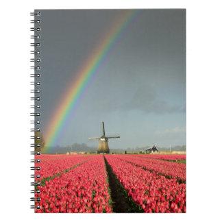 Rainbow, tulips and windmill notebook