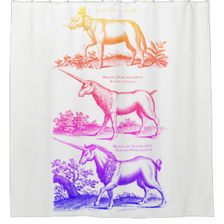 Rainbow Unicorn 2 Shower Curtain