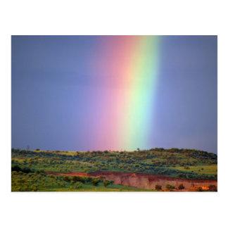 Rainbow wish come true postcard