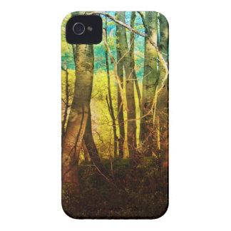 Rainbow Woods Blackberry Bold Case