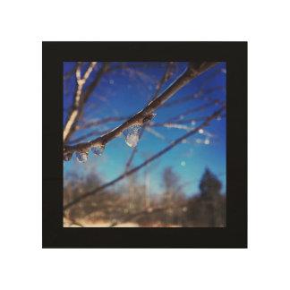 Raindrop Captured in Ice Wood Art Print
