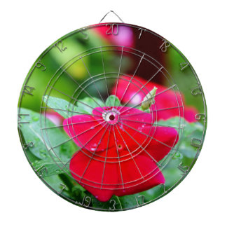 RAINDROP ON PINK FLOWER QUEENSLAND AUSTRALIA DARTBOARD