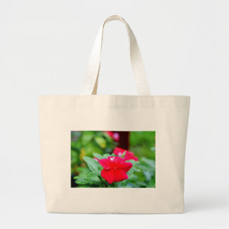 RAINDROP ON PINK FLOWER QUEENSLAND AUSTRALIA LARGE TOTE BAG