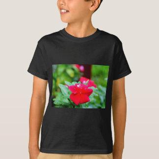 RAINDROP ON PINK FLOWER QUEENSLAND AUSTRALIA T-Shirt