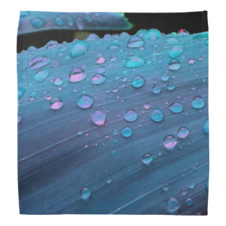 Raindrops Closeup, Spacey Blues Bandana