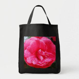 Raindrops on Camellia