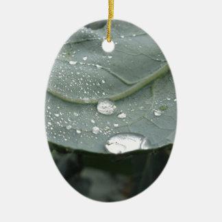 Raindrops on cauliflower leaves ceramic oval decoration