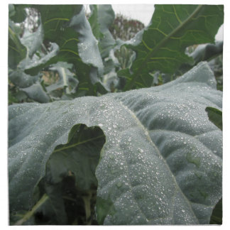 Raindrops on cauliflower leaves cloth napkin