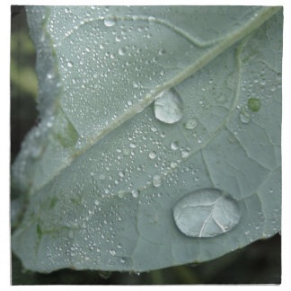 Raindrops on cauliflower leaves cloth napkins