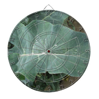 Raindrops on cauliflower leaves dartboard