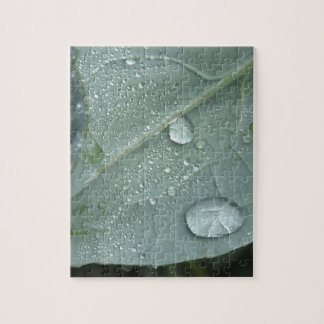 Raindrops on cauliflower leaves jigsaw puzzle
