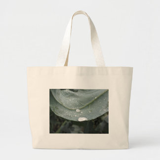 Raindrops on cauliflower leaves large tote bag