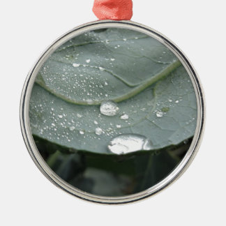 Raindrops on cauliflower leaves metal ornament