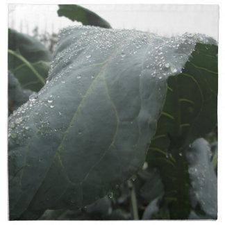 Raindrops on cauliflower leaves napkin