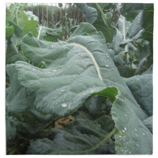 Raindrops on cauliflower leaves napkins