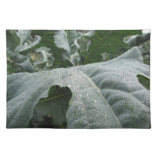 Raindrops on cauliflower leaves place mats