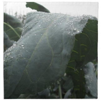 Raindrops on cauliflower leaves printed napkin