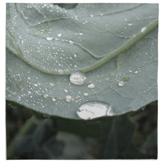 Raindrops on cauliflower leaves printed napkins