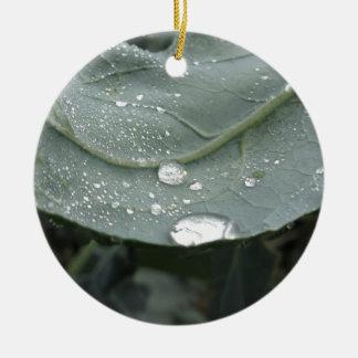 Raindrops on cauliflower leaves round ceramic decoration