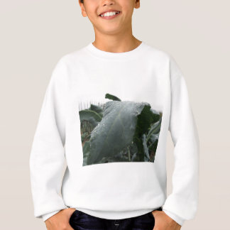 Raindrops on cauliflower leaves sweatshirt