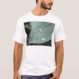Raindrops on cauliflower leaves T-Shirt