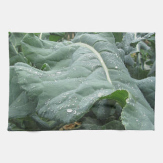 Raindrops on cauliflower leaves towels