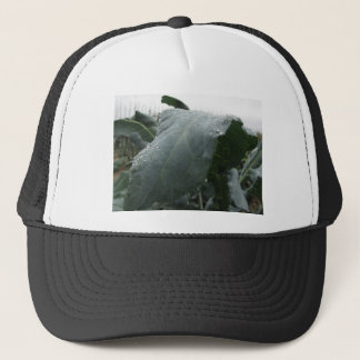 Raindrops on cauliflower leaves trucker hat