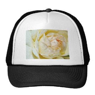 Raindrops on Champagne Blush  White Rose floral Trucker Hats