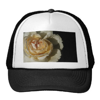 Raindrops on Champagne cream White Rose floral Mesh Hats