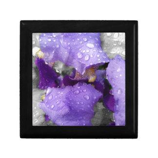 raindrops on iris gift box