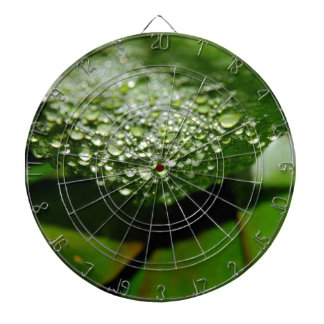 RAINDROPS ON LEAF QUEENSLAND AUSTRALIA DARTBOARD