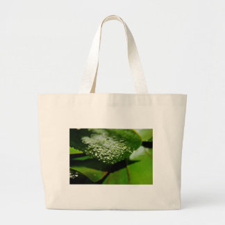 RAINDROPS ON LEAF QUEENSLAND AUSTRALIA LARGE TOTE BAG