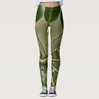 Raindrops on leaves, shades of green leggings
