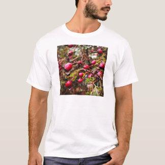 Raindrops On Rosehips T-Shirt