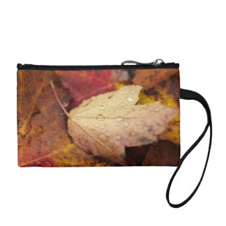 Raindrops on the October leaf Coin Purse