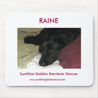 Raine - SunshineGolden Retriever Rescue Mouse Pad