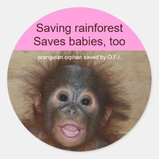 Rainforest Baby Orangutan Classic Round Sticker